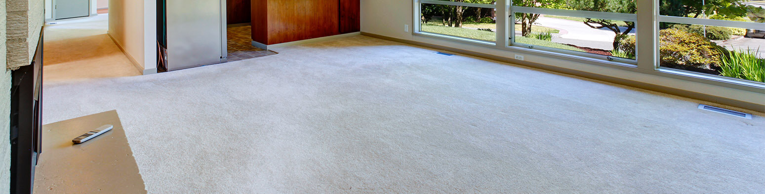 Photograph of a light room with a white carpet by Carpet 1st Flooring